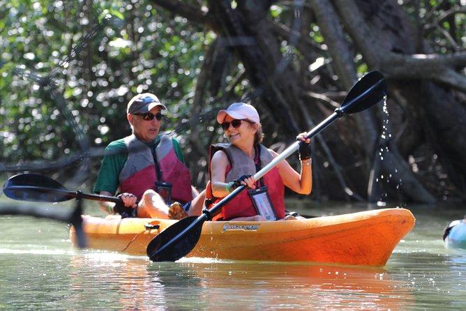 Damas Island Kayaking Mangrove Tour from Manuel Antonio