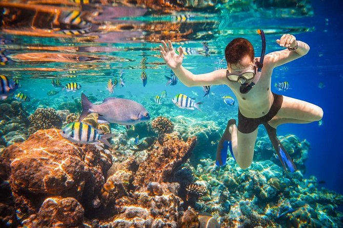 Land´s end discovery snorkeling experience