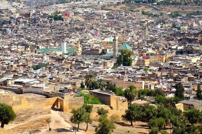 4-hour guided tour of the medina of Fez