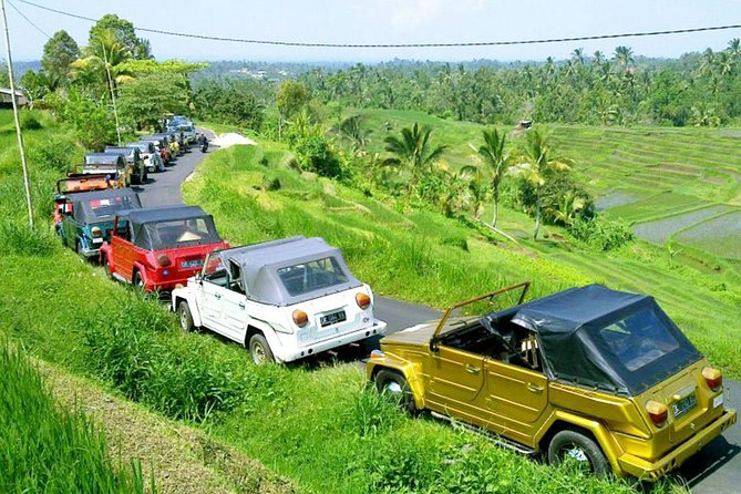 Full-Day Tour to Exploring Jatiluwih Rice Terrace with VW Safari Classic Car