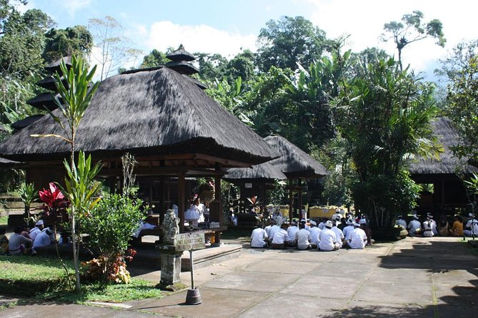 Full-Day Jatiluwih Rice Terrace Private Tour by VW Safari Classic Car with Lunch