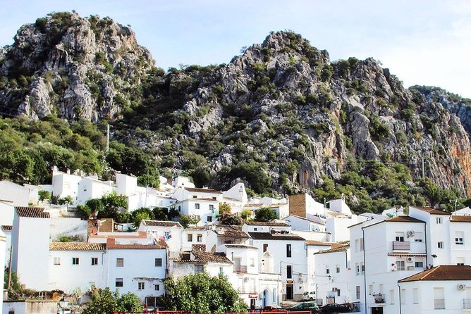 White Villages: Private Guided Day Trip from Seville photo 24