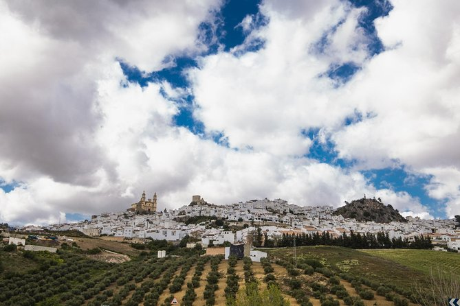 White Villages: Private Guided Day Trip from Seville photo 14