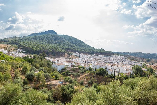 White Villages: Private Guided Day Trip from Seville photo 20