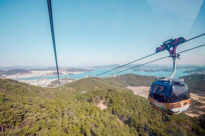 7 Day Private tour from Busan to Seoul, Suncheon Bay Wetland, Hongdo Island
