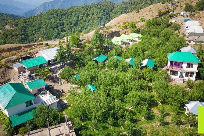 Himalayan Camping in Chail from Delhi