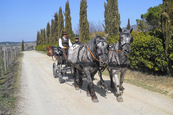 Carriage ride and Lunch in the heart of Chianti