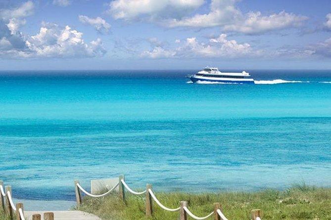 Sea Experience Excursion Ibiza - Formentera