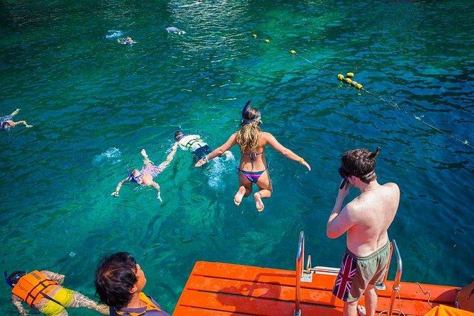 Koh Tao Snorkeling tour visit 5 beautiful spot ( Nangyuan island Shark Bay etc.)