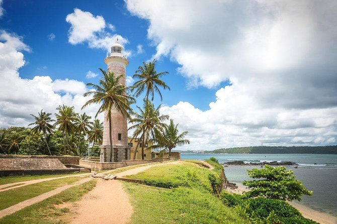 Galle Day Tour with Mangrove Safari and Turtle Hatchery ( All Inclusive )