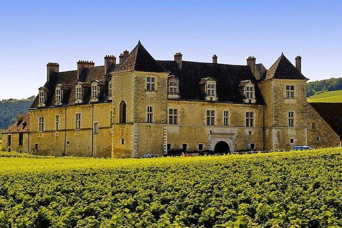 Côte de Nuits Wine Tour