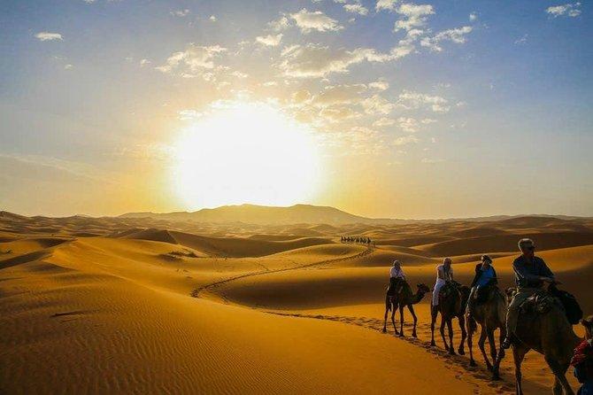 Sunset Camel Trek - M'Hamid El Ghizlane