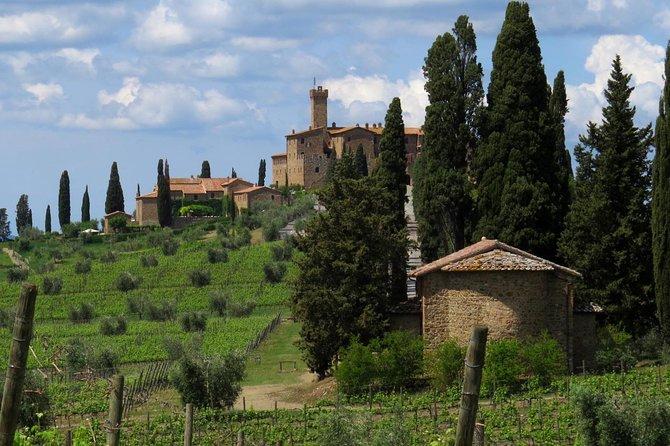 The Brunello wine experience