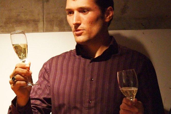 Visit of the vineyard & full range tasting + Japanese assistant & transport