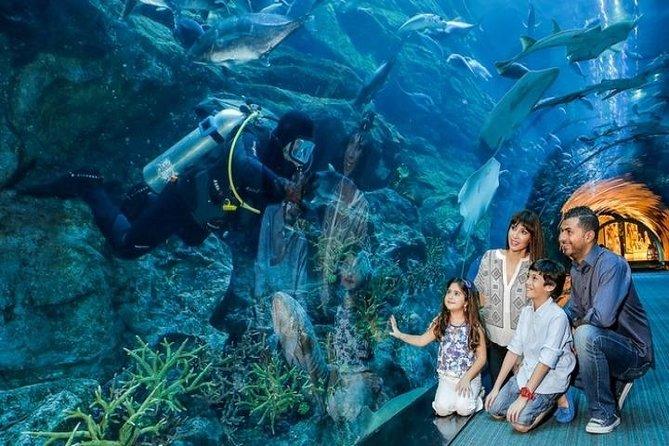 Private Dubai City Tour with Burj Khalifa & Underwater Zoo Ticket