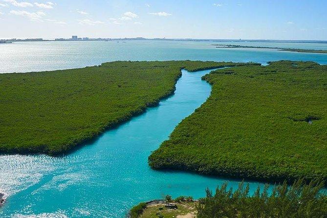 Jungle Tour - Discover the Mangroves (Couple)