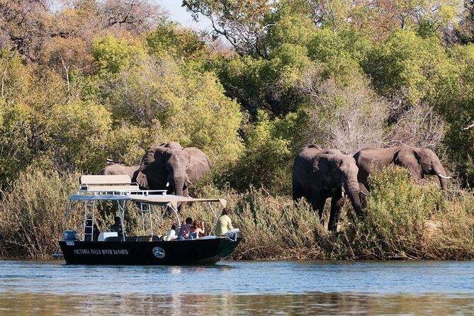 Victoria Falls River Safari Cruise