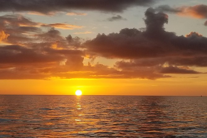 Bring your Dog Sunset Private Boat Trip in Naples FL with Secluded Island Stop