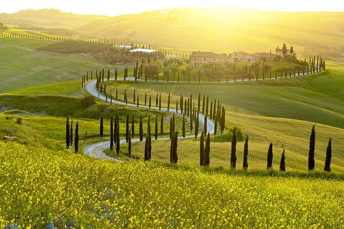 Savour Exquisite Wines, Brunello of Montalcino & Nobile Wine Tour (3 Wineries)