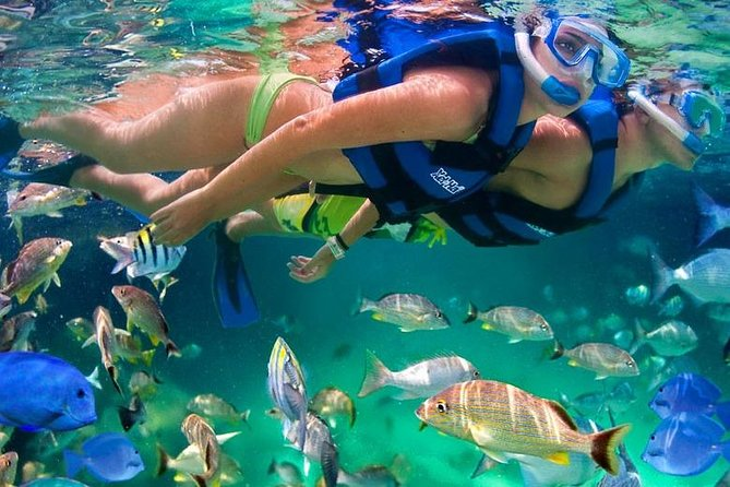 Tour 5 rosary islands snorkel cholon plankton cartagena de indias