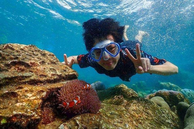 Bangkok to Pattaya: Nemo Island & Big Buddha Day Trip