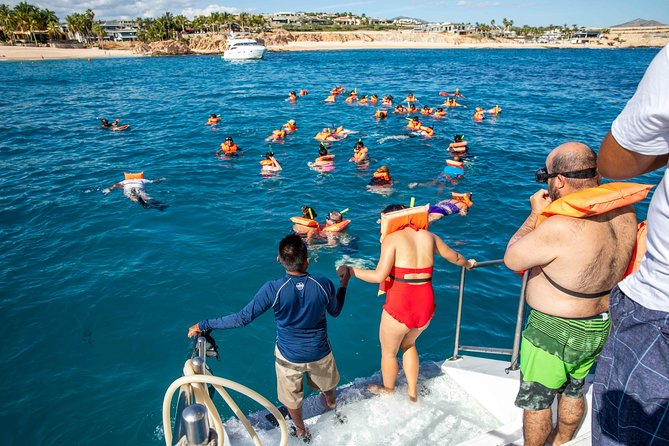 Snorkel Boat and City Tour Combo