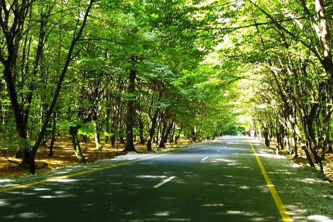 Full-Day Group Tour to Gabala and Shamakhi