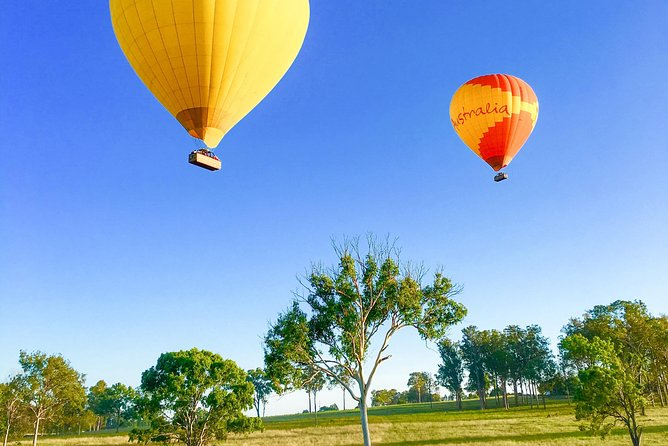 Hot Air Ballooning Brisbane including Canungra Vineyards breakfast