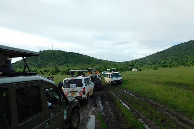 9 Days visit to Maasai Mara Reserve, Lake Nakuru National Park and Hell's Gate