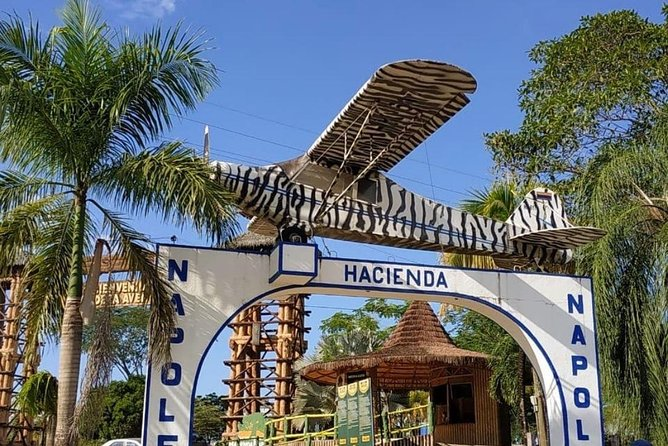 Medellin and surrounding area tour