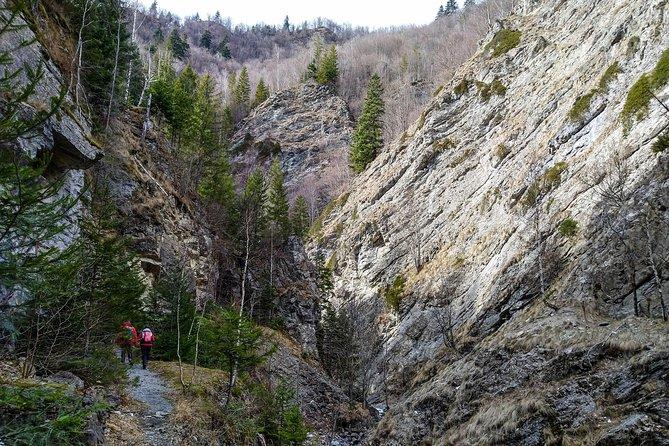 From Brasov: Hiking in Putna Vrancea Natural Park