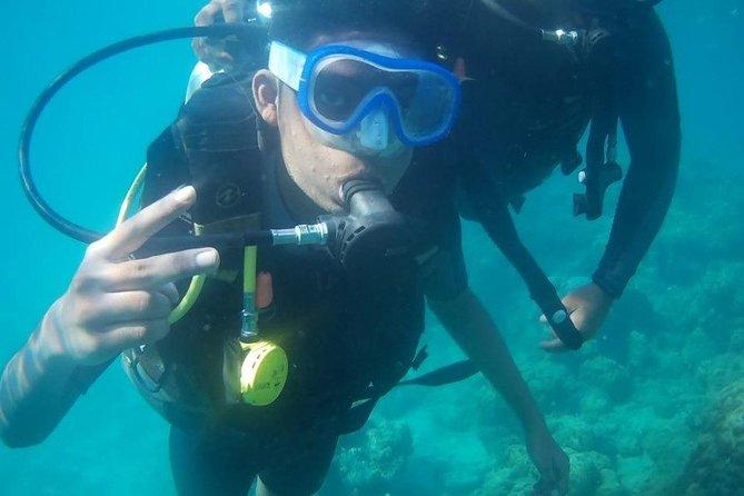 Scuba Diving at Havelock