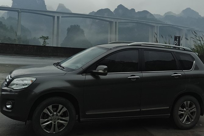 Private Transfer from Chengdu to Mount Emei and Stops at Leshan Giant Buddha