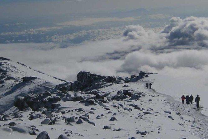 Mt Kilimanjaro Trek, 6 Days - Umbwe Route