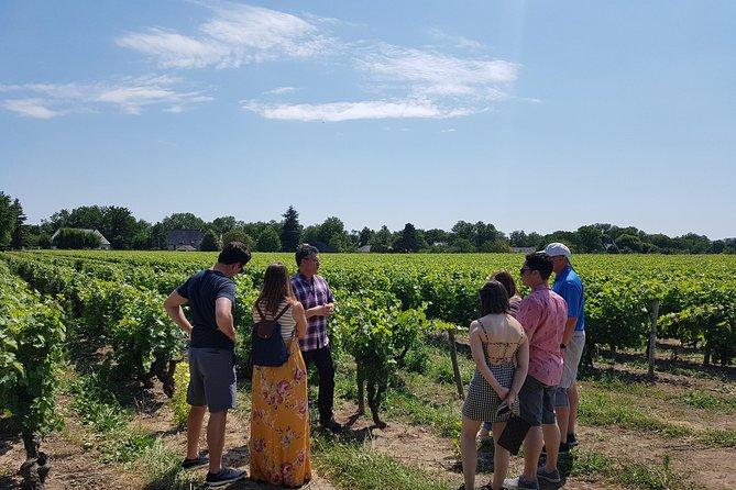 Loire Valley Half Day Wine Tour from City of Tours : 2 wine tastings in Vouvray