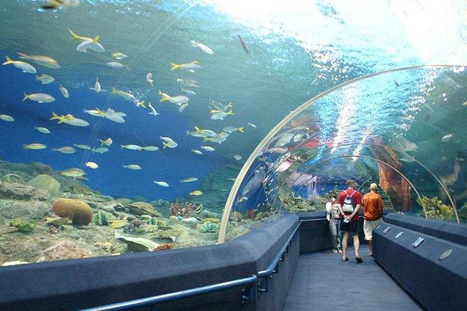 Underwater World at Pattaya Admission Ticket with Return Transfer