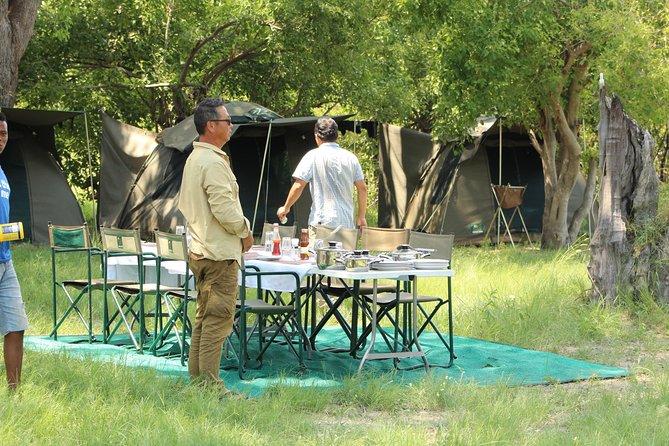 Central Kalahari Game Reserve Tented Camping Safari In Botswana