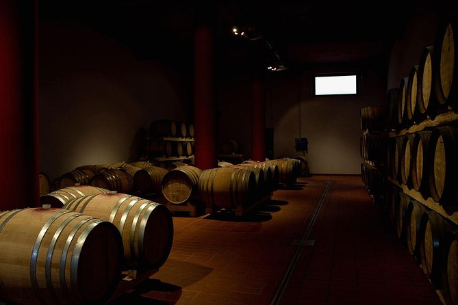 Etna and Wine Tour from Taormina
