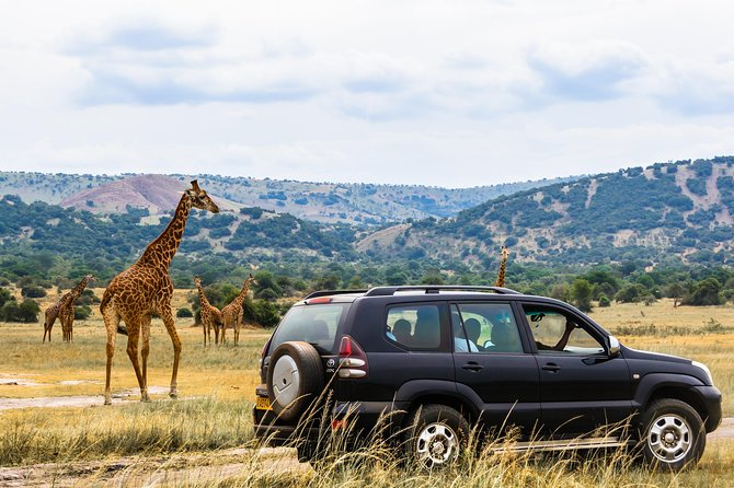 Car Rental SUV 4x4 (Safari and Country Tour)