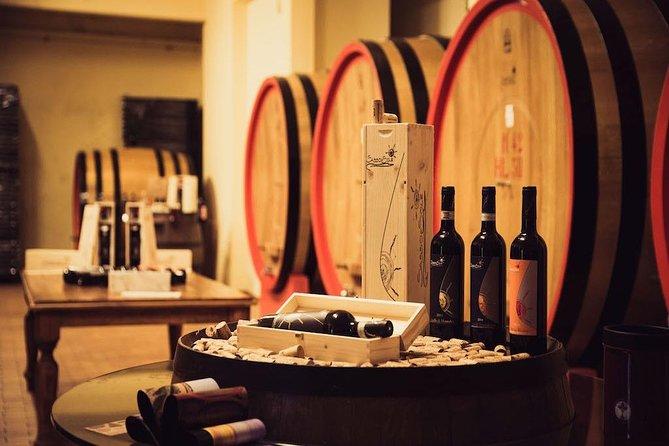 Brunello wine tasting experience at Sassodisole in Montalcino