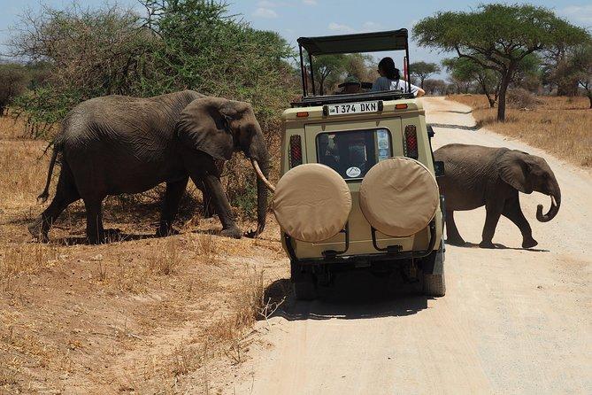 03 DAYS-Serengeti Safari
