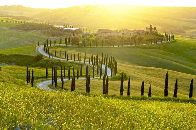 San Gimignano and Volterra Private Day Tour with Wine Tasting & Lunch in Chianti