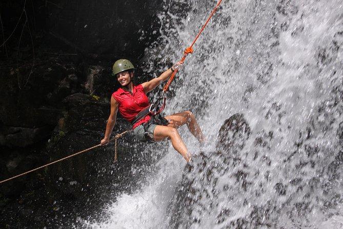 Jungle Fly: Adventure at the Jungle in Iguazu