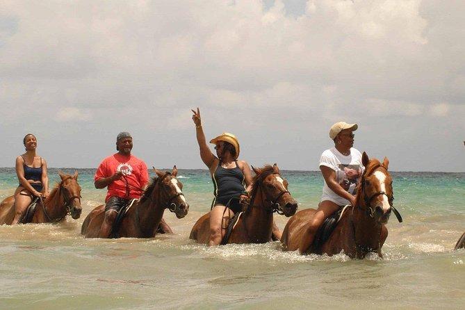 Half Day Private Beach Horseback Riding