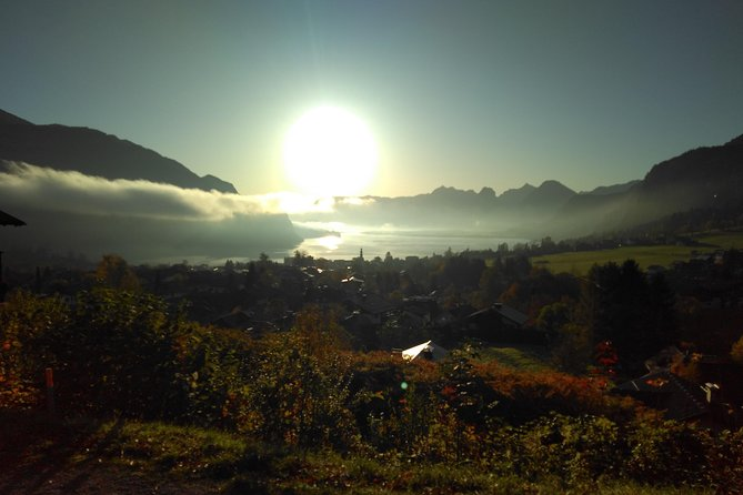 Good Morning Hallstatt / Early Bird