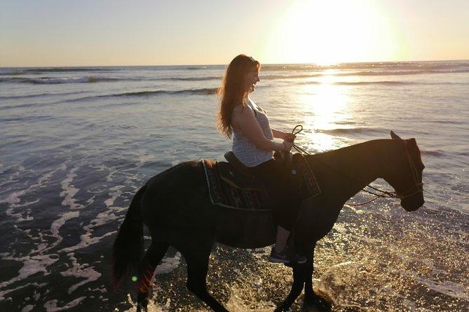 Horse Safari Punta Mala Wildlife Refuge