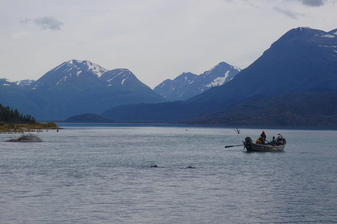 Full-Day Upper Kenai River Guided Fishing Trip photo 2
