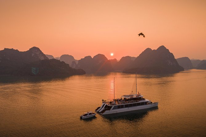 The Catamaran Cruise - Luxury Day Tour in Halong & Lan Ha Bay Full Activities