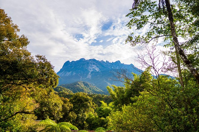 Day Tour From Kota Kinabalu: Mt. Kinabalu, Poring Hot Spring & Canopy Walk
