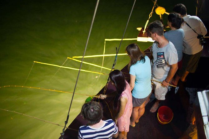 Special Activities: Experience Bioluminescent Plankton Kayak & Halong Bay Cruise